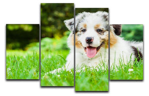 Young puppy lying on fresh green grass in public park 4 Split Panel Canvas - Canvas Art Rocks - 1