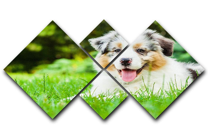 Young puppy lying on fresh green grass in public park 4 Square Multi Panel Canvas