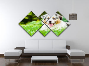 Young puppy lying on fresh green grass in public park 4 Square Multi Panel Canvas - Canvas Art Rocks - 3