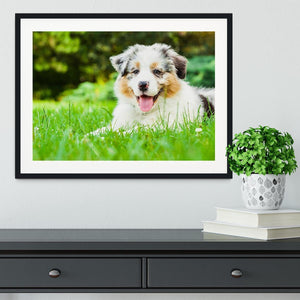 Young puppy lying on fresh green grass in public park Framed Print - Canvas Art Rocks - 1
