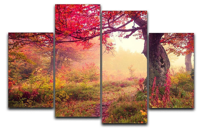 autumn trees in forest 4 Split Panel Canvas