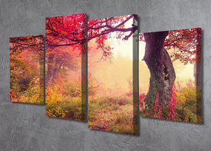 autumn trees in forest 4 Split Panel Canvas  - Canvas Art Rocks - 2