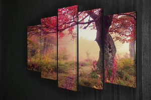 autumn trees in forest 5 Split Panel Canvas  - Canvas Art Rocks - 2