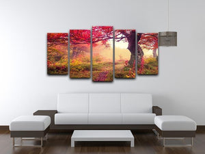 autumn trees in forest 5 Split Panel Canvas  - Canvas Art Rocks - 3