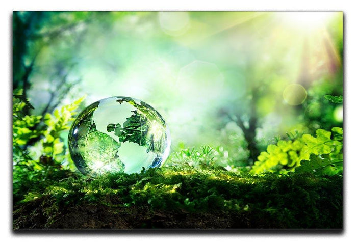crystal globe on moss in a forest Canvas Print or Poster