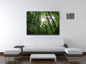 deciduous forest Canvas Print or Poster - Canvas Art Rocks - 4