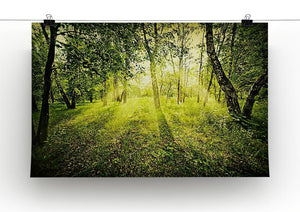deep forest on summer morning Canvas Print or Poster - Canvas Art Rocks - 2