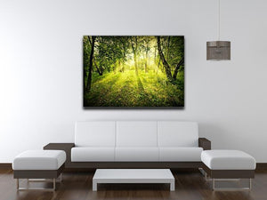 deep forest on summer morning Canvas Print or Poster - Canvas Art Rocks - 4