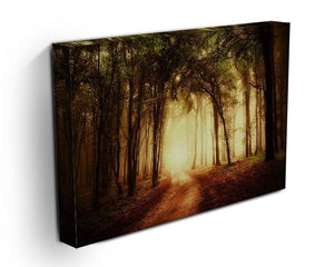 golden forest at autumn Canvas Print or Poster - Canvas Art Rocks - 3