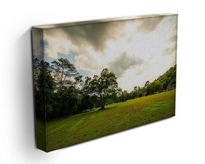 grass and bigtree in the forrest Canvas Print or Poster - Canvas Art Rocks - 3