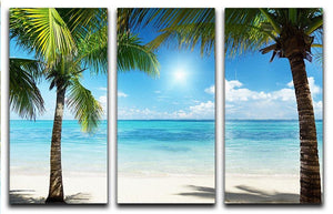 palms and beach 3 Split Panel Canvas Print - Canvas Art Rocks - 1