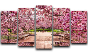 spring foliage near the National Mall 5 Split Panel Canvas  - Canvas Art Rocks - 1