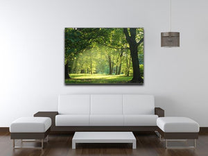 trees in a summer forest Canvas Print or Poster - Canvas Art Rocks - 4