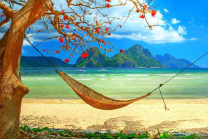 tropical beach scene with hammock Wall Mural Wallpaper - Canvas Art Rocks - 1