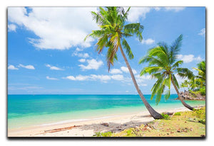 tropical beach with coconut palm Canvas Print or Poster - Canvas Art Rocks - 1
