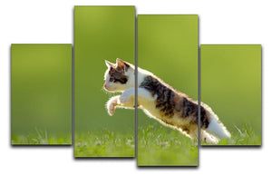 young cat jumps over a meadow in the backlit 4 Split Panel Canvas - Canvas Art Rocks - 1