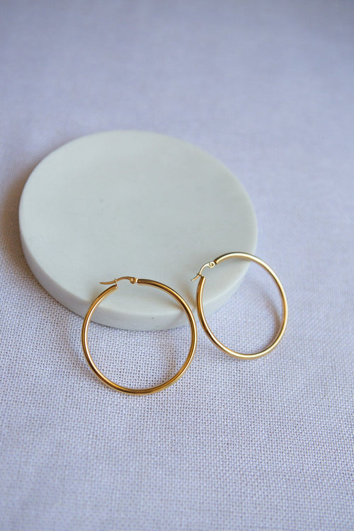 Classic Large Latch Back Gold Hoop Earrings - Wynter Bloom