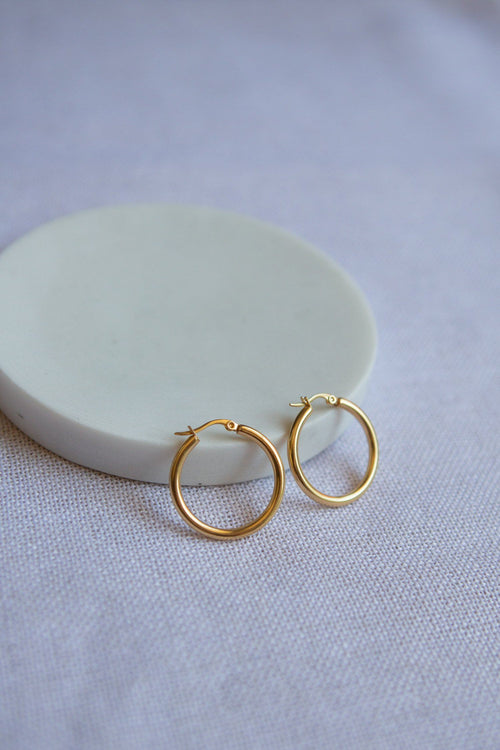 Classic Small Latch Back Gold Hoop Earrings - Wynter Bloom