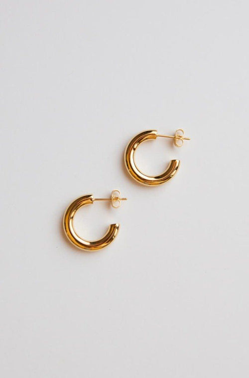 Gold Mini Thick Hoop Earrings - Wynter Bloom