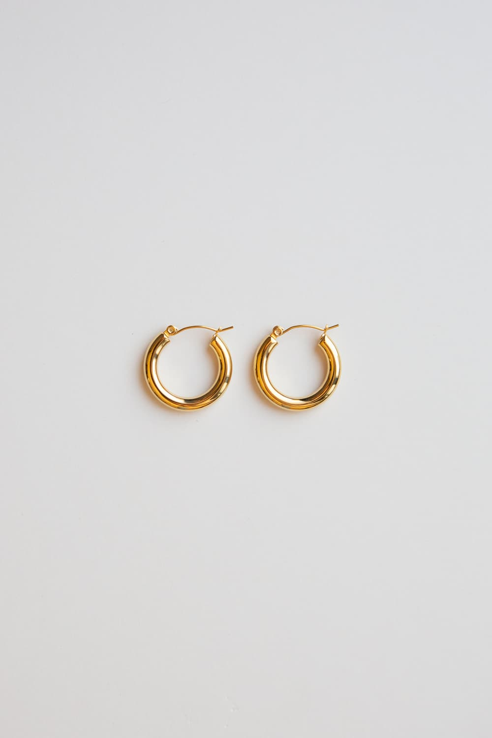 Gold Small Thick Hoop Earrings - Wynter Bloom