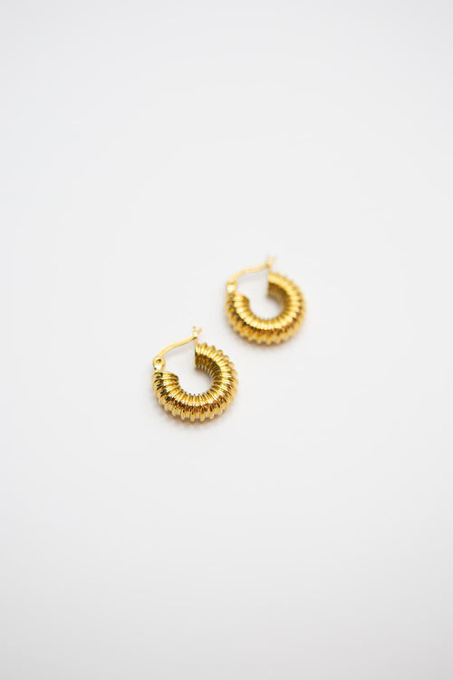 Small Gold Ribbed Vacuum Hoops