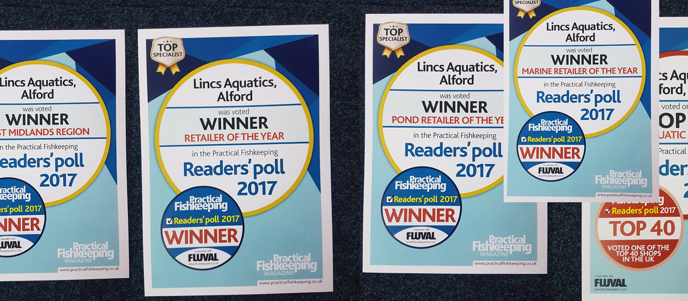 Award Winning Aquatic Retailers