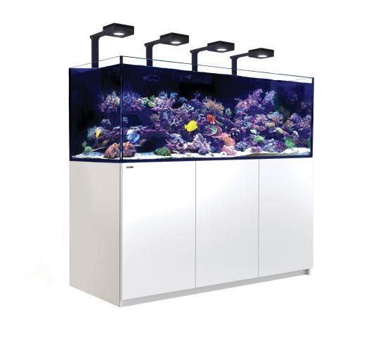 Red Sea Reefer XXL 750 Deluxe Aquarium-Reef Tanks-Lincs Aquatics Ltd