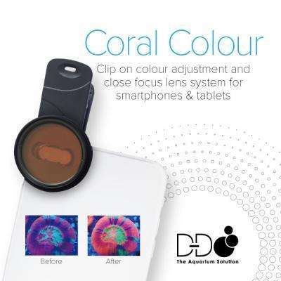 D-D Coral Colour - Lens Kit