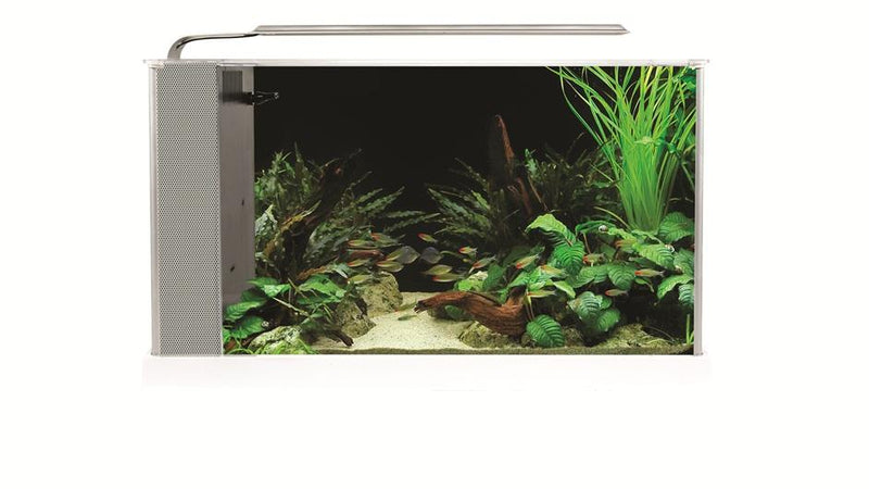 Fluval Spec Aquarium Kit White 19L-Hagen-Lincs Aquatics Ltd