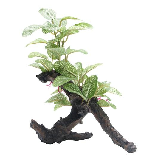 "Fluval African Shade Leaf Plant on Root - 20 cm (8"")-Fake Plants-Lincs Aquatics Ltd"