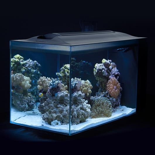 Fluval Sea EVO Aquarium Kit - 52 L-fluval nano tanks-Lincs Aquatics Ltd