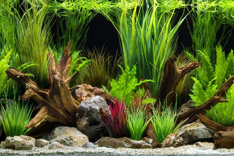 Marina Double Sided Aquarium Background Oasis/Slate Wall 45cm High Per 30cm Long