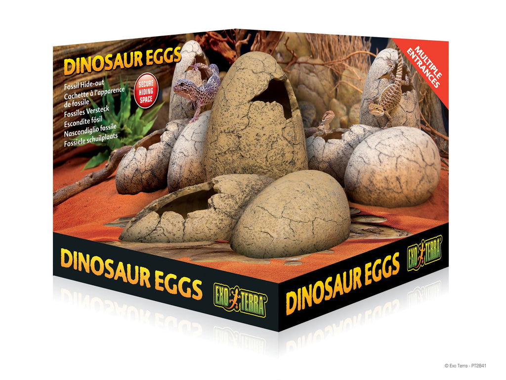 Dinosaur Eggs-Lincs Aquatics Ltd