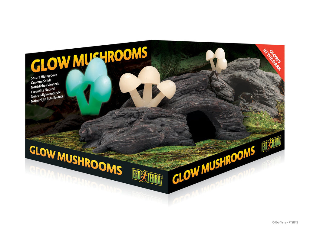 Glow Mushrooms-Lincs Aquatics Ltd