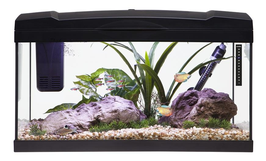Marina Premium 54 Aquarium Set Black-Small Fluval Freshwater Aquariums-Lincs Aquatics Ltd