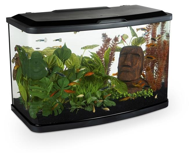 Marina Vue 60 Aquarium Set-Small Fluval Freshwater Aquariums-Lincs Aquatics Ltd