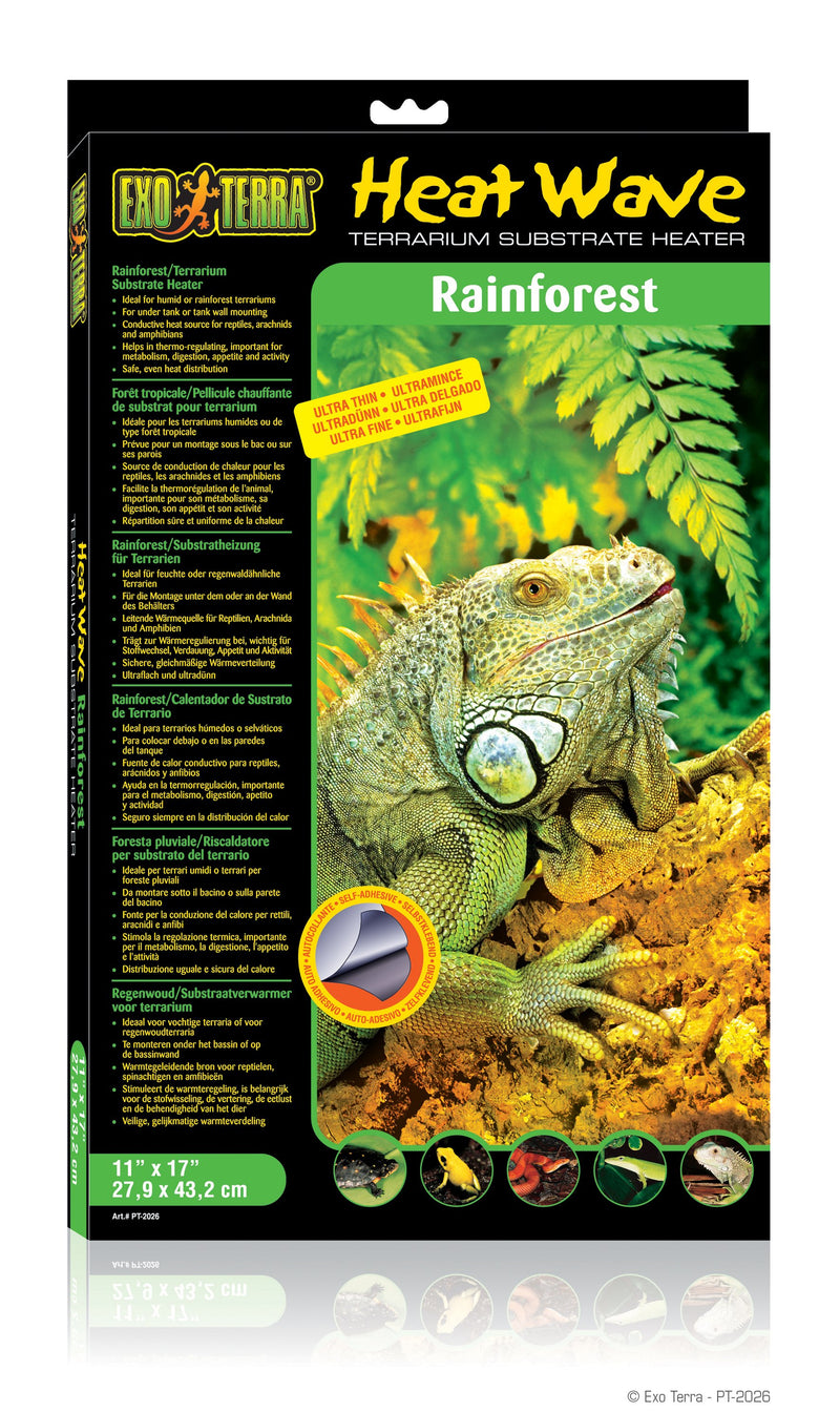 Heat Wave Rainforest-Lincs Aquatics Ltd