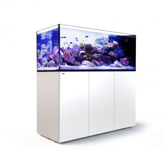 Red Sea Reefer Peninsula P650 Aquarium
