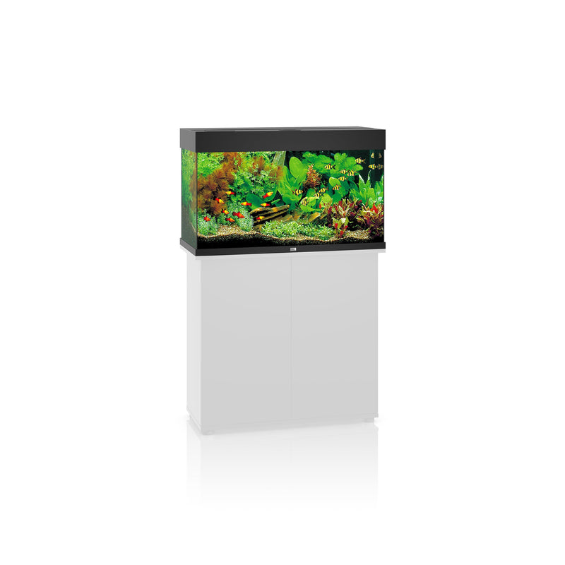 Juwel Rio 125 LED Aquarium Only Black-Aquariums-Lincs Aquatics Ltd