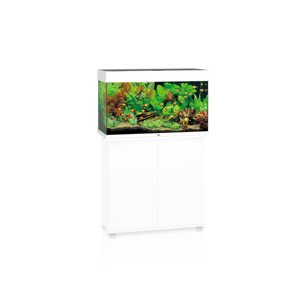 Juwel Rio 125 LED Aquarium Only White-Aquariums-Lincs Aquatics Ltd