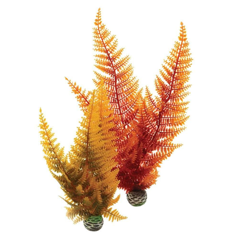 biOrb Aquatic autumn fern set 2-biOrb-Lincs Aquatics Ltd