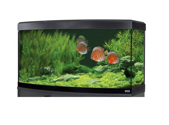Fluval Vicenza 260 LED Aquarium Black