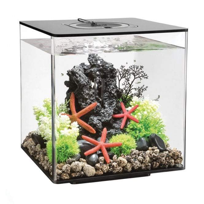 biOrb CUBE 30 LED black-biOrb-Lincs Aquatics Ltd