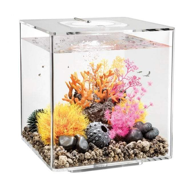 biOrb CUBE 30 LED clear-biOrb-Lincs Aquatics Ltd