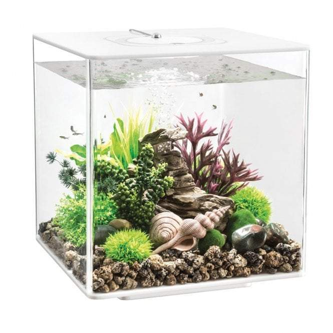 biOrb CUBE 30 LED white-biOrb-Lincs Aquatics Ltd