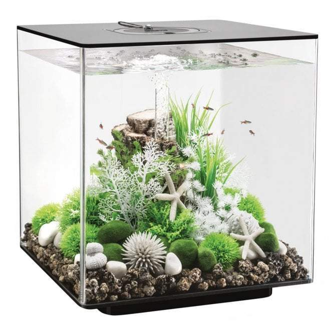biOrb CUBE 60 LED black-biOrb-Lincs Aquatics Ltd