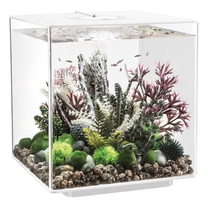 biOrb CUBE 60 LED white-biOrb-Lincs Aquatics Ltd