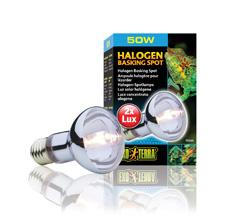 Exo Terra SunGlo Halogen Lamp 50w-basking lamp-Lincs Aquatics Ltd