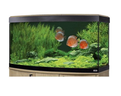 Fluval Vicenza 260 LED Aquarium Oak