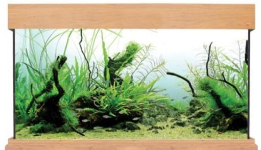 Aqua One Oak Style 230 Aquarium-Oak Style-Lincs Aquatics Ltd